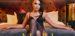 art-aldi2