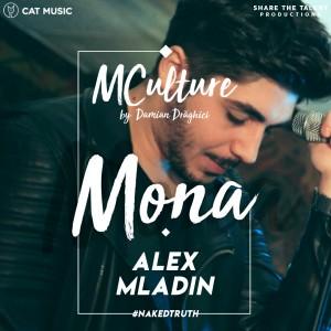 MCulture_MONA
