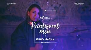 MCulture_PRINTISORUL_MEU_facebook_cover