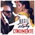 condimente_single_cover_gfx